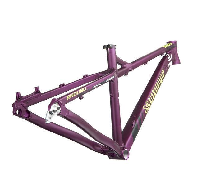 Sentinel-purple.jpg